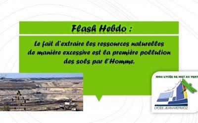 Flash Hebdo #2 - extraction