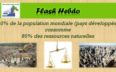 Flash Hebdo #10