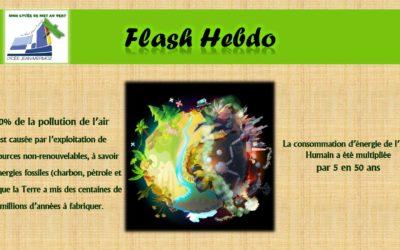 Flash Hebdo #14