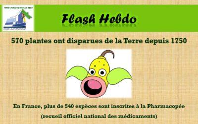 Flash Hebdo #15