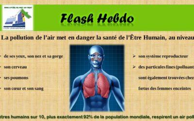Flash Hebdo #18