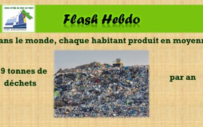 Flash Hebdo #21