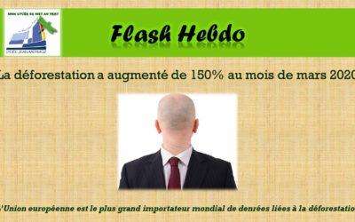 Flash Hebdo #22