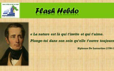 Flash Hebdo #23