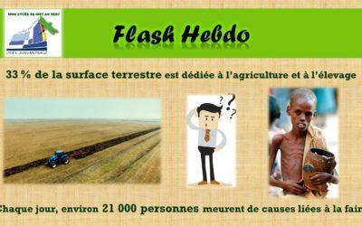 Flash Hebdo #24
