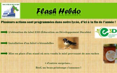 Flash Hebdo #25
