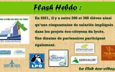 Flash Hebdo #33