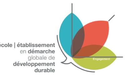 E3D engagement